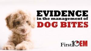 Dog-Bites-First10EM